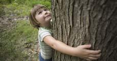 Környezeti nevelés