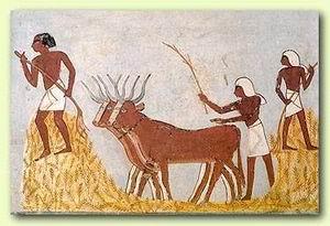 Mezőgazdasági munka az ókori Egyiptomban