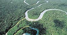 Amazónia pusztulása