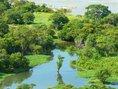 Pequeño Caño - Rio Orinoco - Amazonas