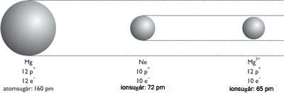 A magnéziumatom, a neonion, és a magnéziumion mérete