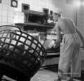 A sófoki kenyérgyárban