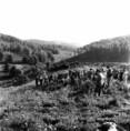 Erdészeti tanulók tanulmányúton