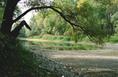 Csökken a vízszint a Mosoni Duna-ágban