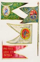 Nemesi felkelõ lovassági zászlók (1797-1809)