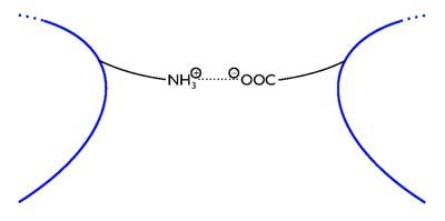 A fehérjékben kialakuló ionkötés