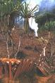 A kertek létesítéséhez ki kellett irtani az erdőt