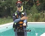 Barrakuda, manta