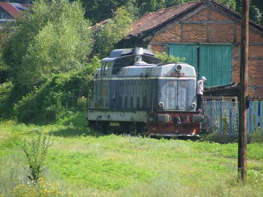 oravica3