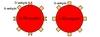 A Rh-pozitív és A Rh-negatív vörösvérsejt
