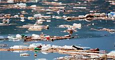 Vízszennyezés hazánkban