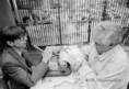 Sebeők János író kísérlete az Állatkertben