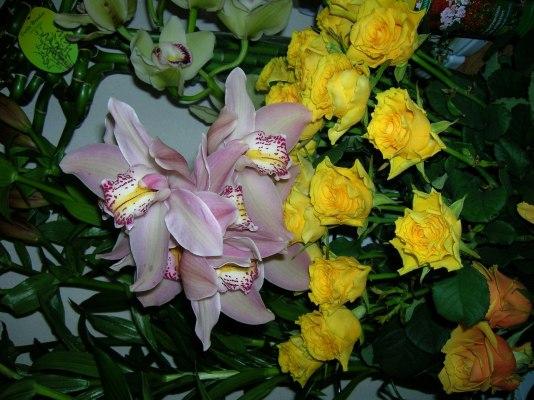 Kidobott virágok