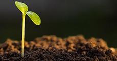 Új Föld-etika kell?
