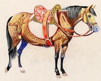 Felnyergelt ló (900)