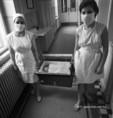 A Schöpf-Mérei Ágost Kórházban