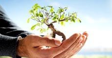 Versenyképes környezetvédelem