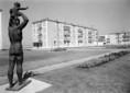Új város születik: Tiszaszederkény