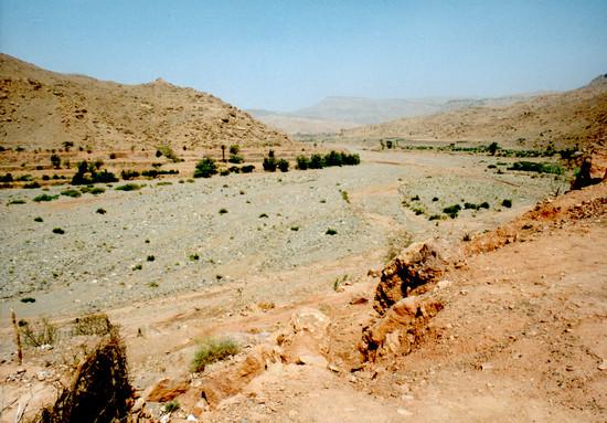 Elsivatagosodás