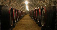 A tokaji bor jótékony hatása