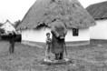 A tiszacsécsei Móricz-ház