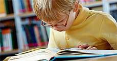 A nyelvtanulás növelheti az agy méretét?