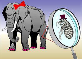 flea-elephant-280
